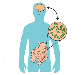 It's already well established that gut microbes affect your mood and behaviour. Could they be controlling your appetite and dietary preferences as well?
