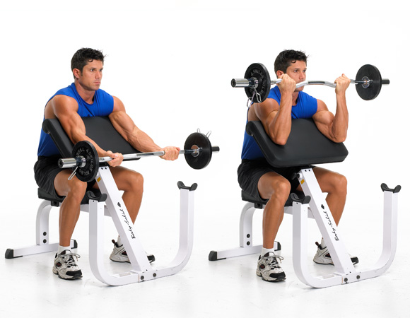 The 23 Best Biceps Exercises - Early To Rise  Preacher