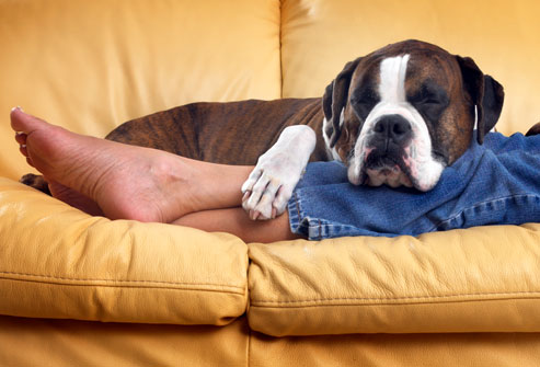 getty_rm_person_relaxing_with_dog_on_sofa