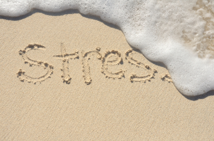 Leading a Low-Stress Life by Living Right